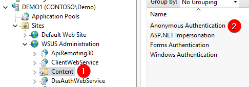 Check Anonymous Authentication WSUS